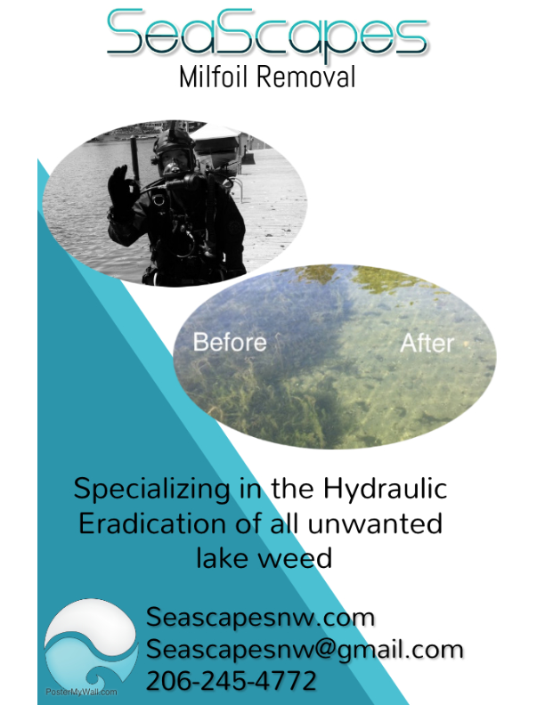 Seascapes Milfoil Removal